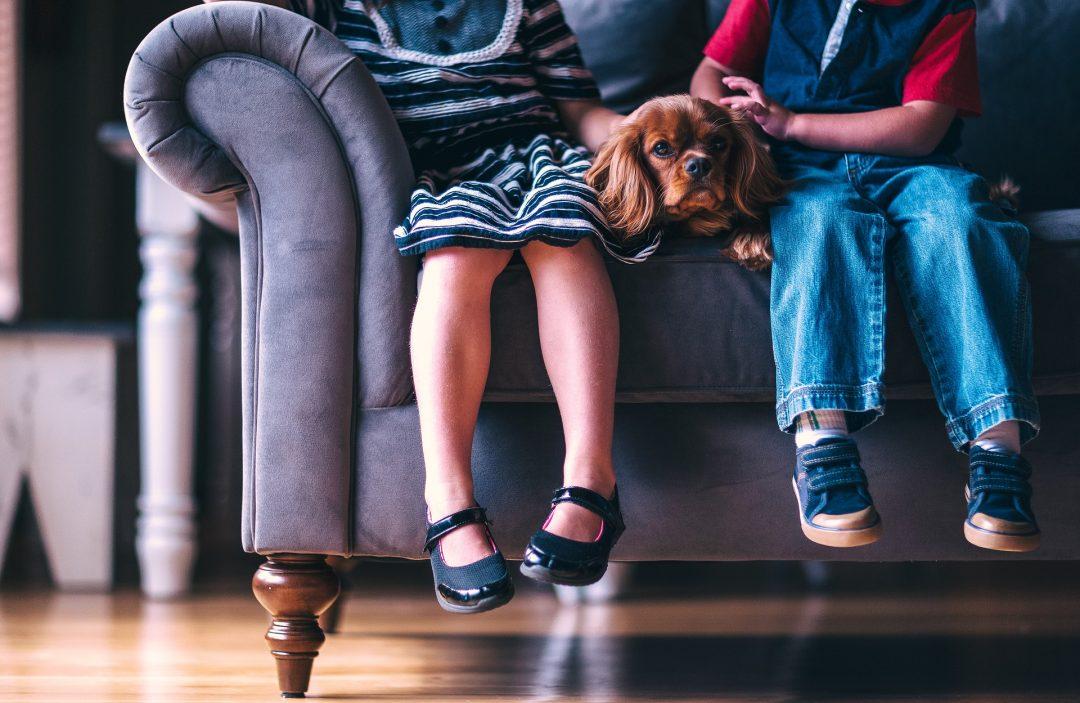 Мальчики и девочки – разница в воспитании